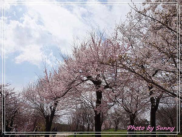 東山動植物園12.jpg