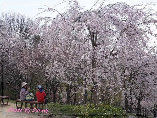 東山動植物園14.jpg