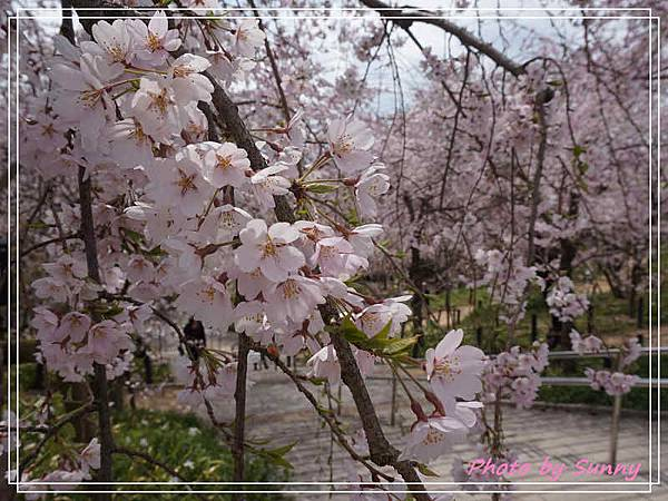 東山動植物園15.jpg