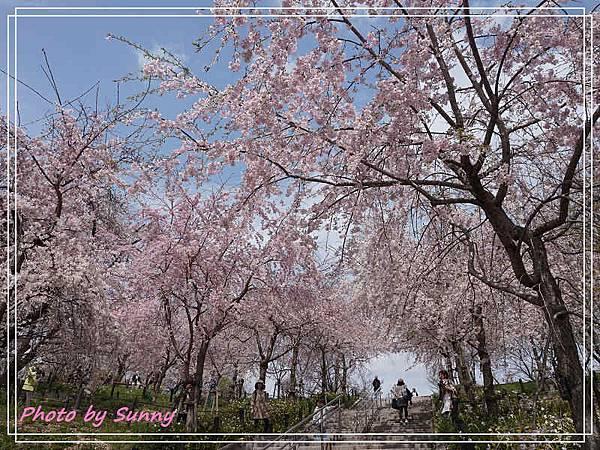 東山動植物園17.jpg