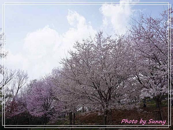 東山動植物園18.jpg