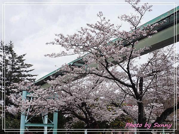 東山動植物園24.jpg