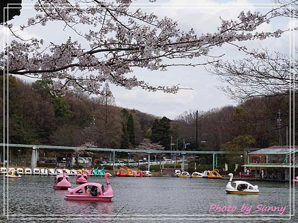 東山動植物園25.jpg