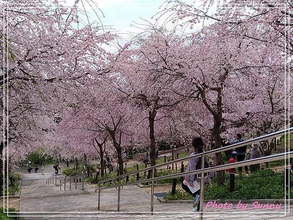 東山動植物園29.jpg