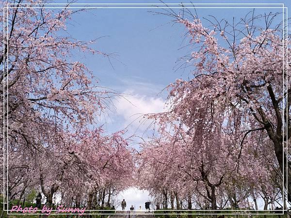 東山動植物園30.jpg