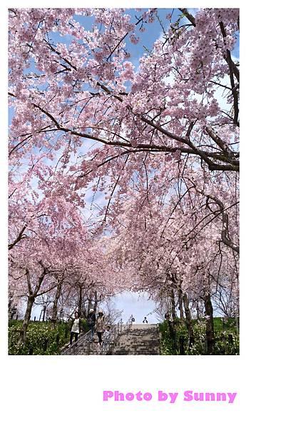 東山動植物園32.jpg