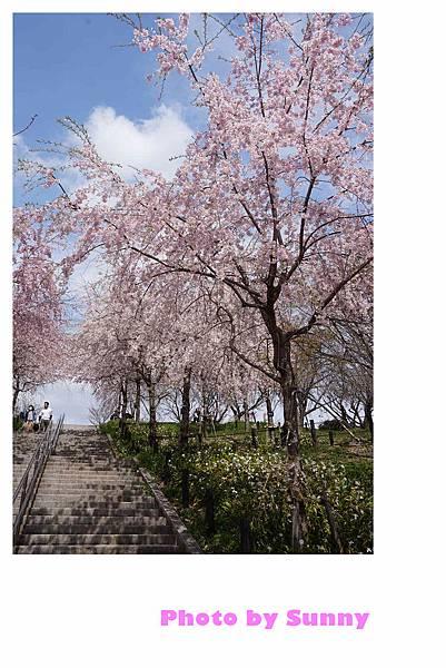 東山動植物園38.jpg