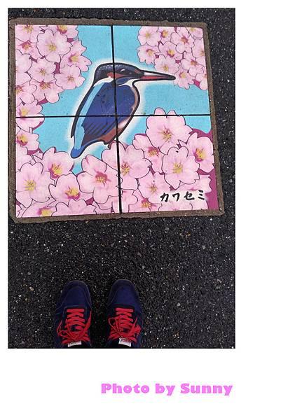 山崎川24.jpg