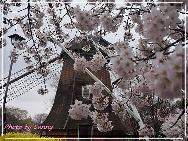 名城公園7.jpg