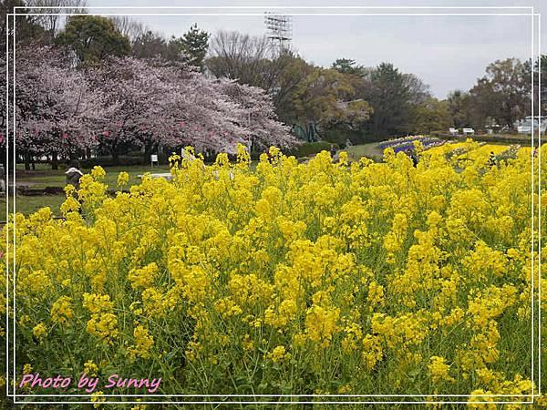 名城公園8.jpg