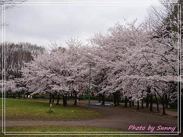 名城公園9.jpg