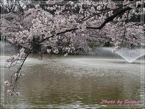 名城公園14.jpg
