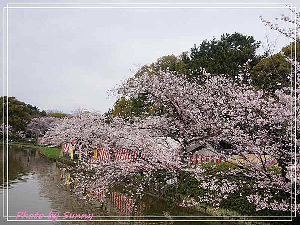 名城公園16.jpg