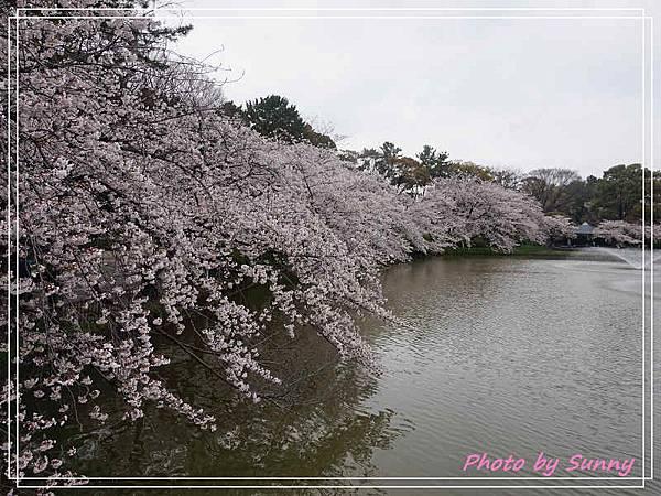名城公園17.jpg