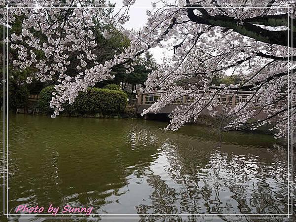 名城公園18.jpg