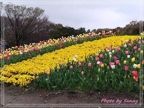 名城公園22.jpg