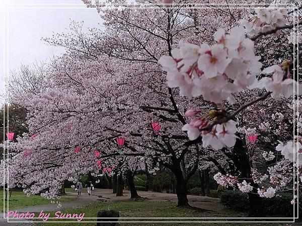 名城公園23.jpg
