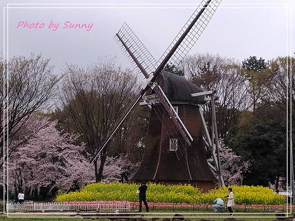 名城公園26.jpg