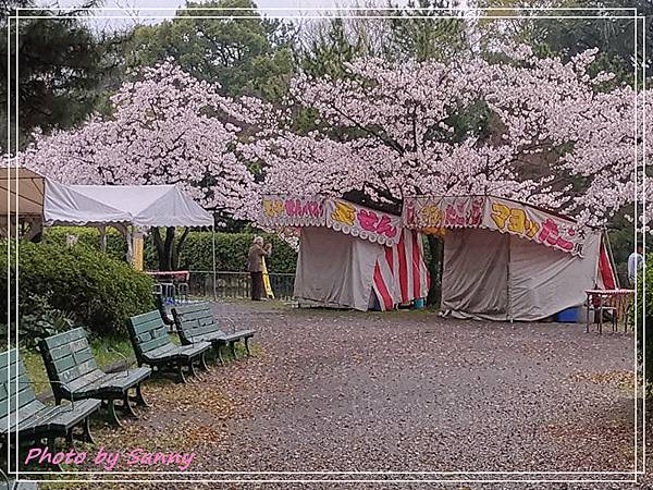 名城公園27.jpg