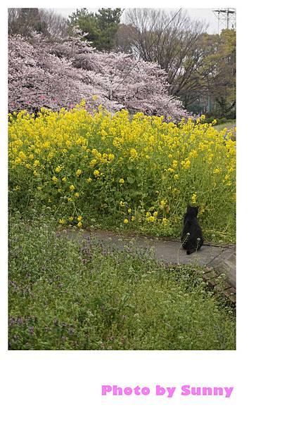 名城公園28.jpg