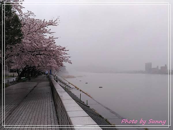 木曾川3.jpg