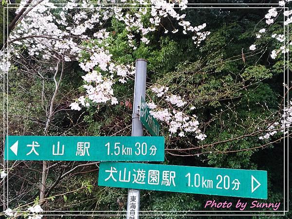 木曾川12.jpg