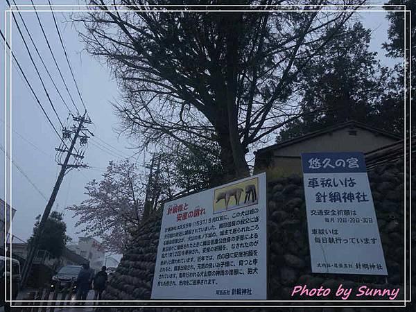 針綱神社1.jpg