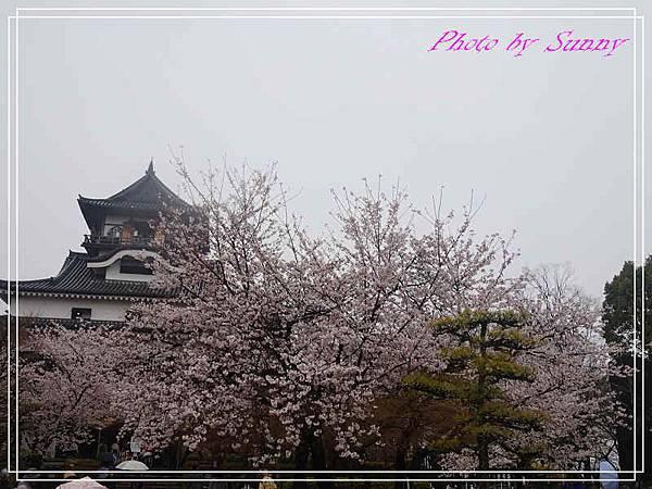 犬山城14.jpg