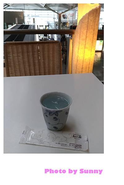 新特麗中部國際機場16.jpg