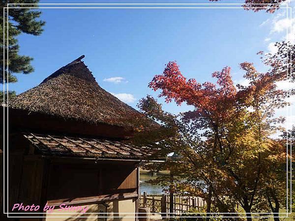 岡山後樂園3.jpg
