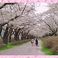 18-04-27-11-52-04-930_deco.jpg