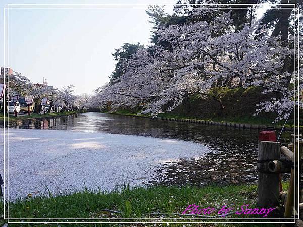 弘前公園2.jpg