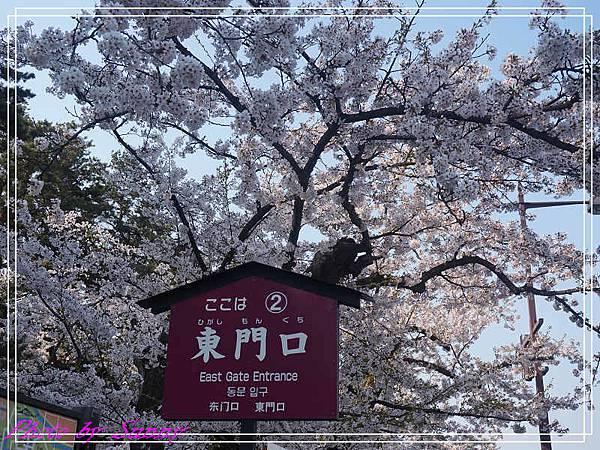 弘前公園3.jpg