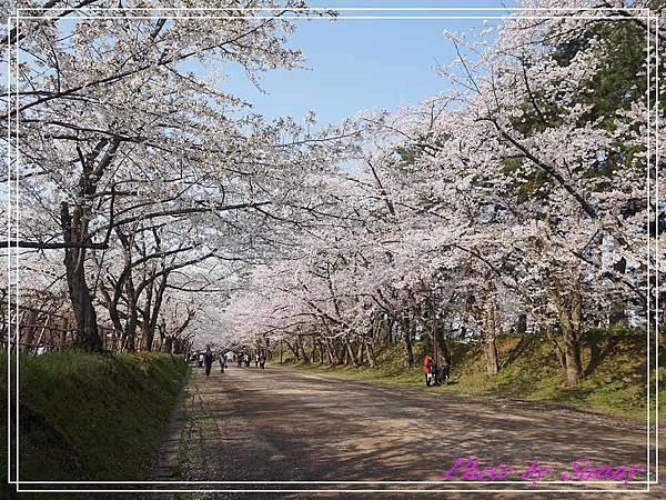 弘前公園4.jpg