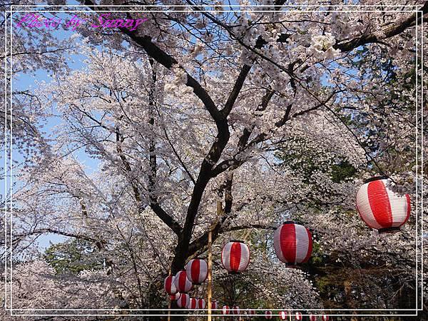 弘前公園9.jpg