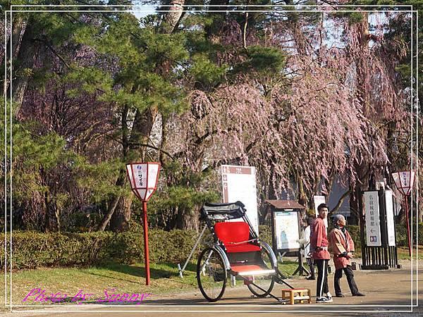 弘前公園11.jpg