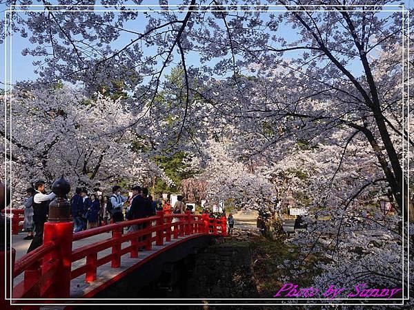 弘前公園13.jpg