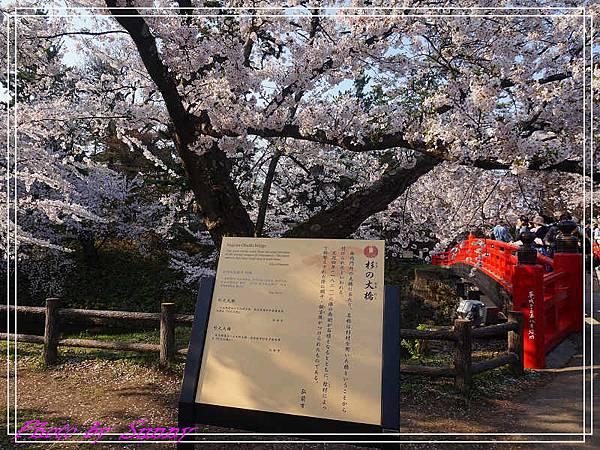弘前公園18.jpg