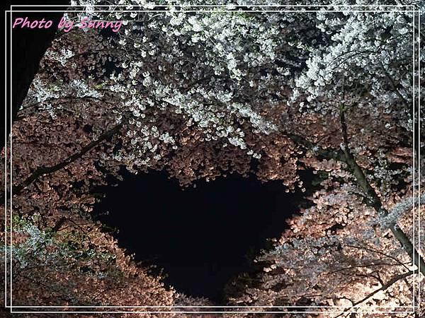 弘前公園48.jpg