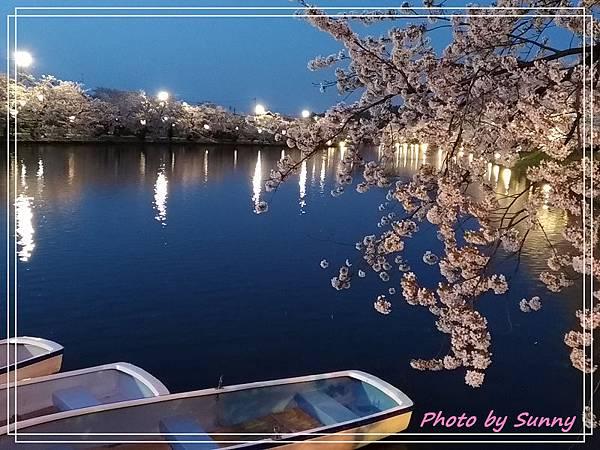 弘前公園55.jpg