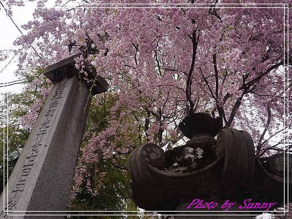 櫻山神社23.jpg