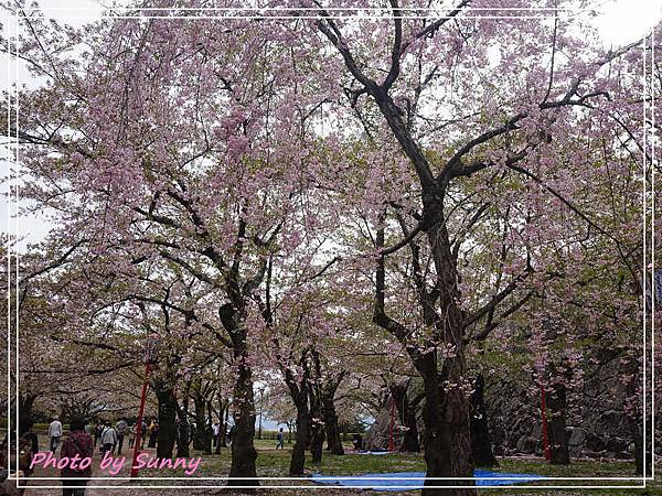 盛岡城跡公園1.jpg