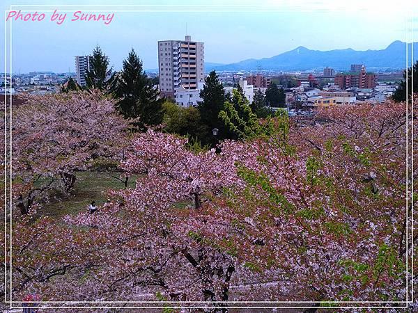 盛岡城跡公園8.jpg