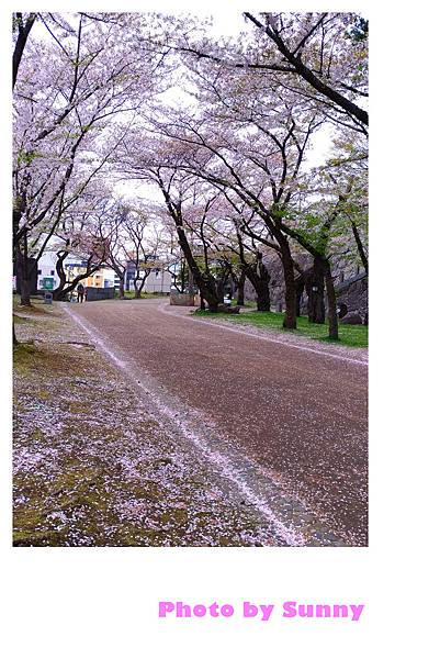 盛岡城跡公園15.jpg