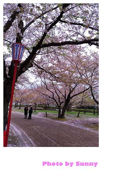 盛岡城跡公園16.jpg