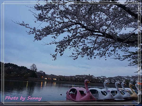 高松之池5.jpg