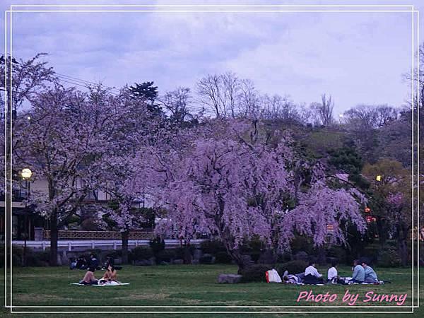 高松之池8.jpg