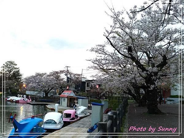高松之池18.jpg