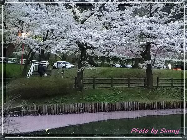 高松之池19.jpg
