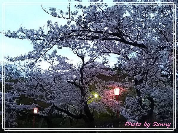 高松之池20.jpg
